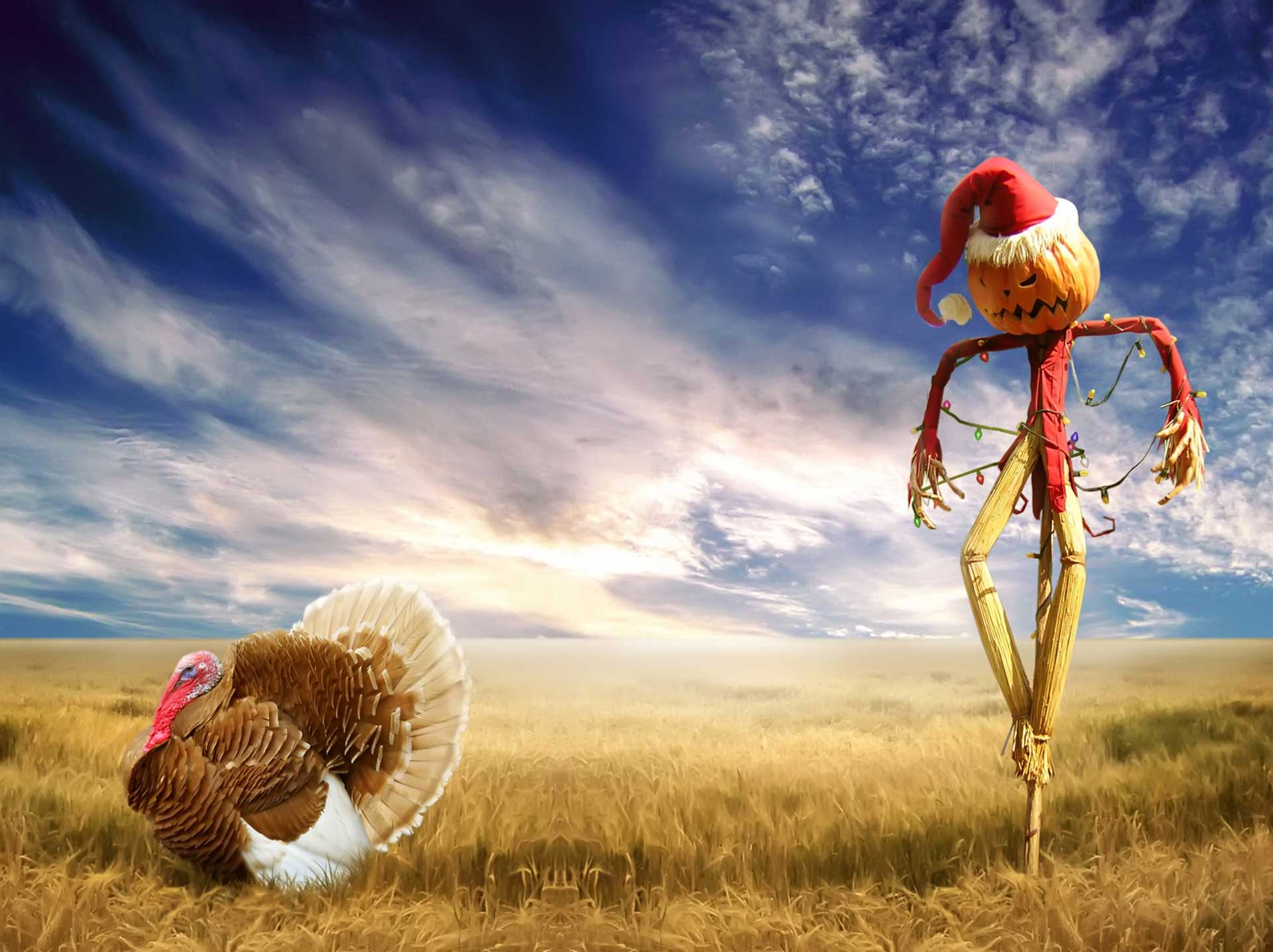 Thanksgiving wallpaper, turkey, scarecrow, jack-o-lantern, Christmas lights, santa suit