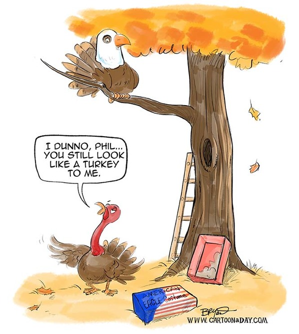 Thanksgiving cartoon, American bald eagle costume, turkey in a tree,