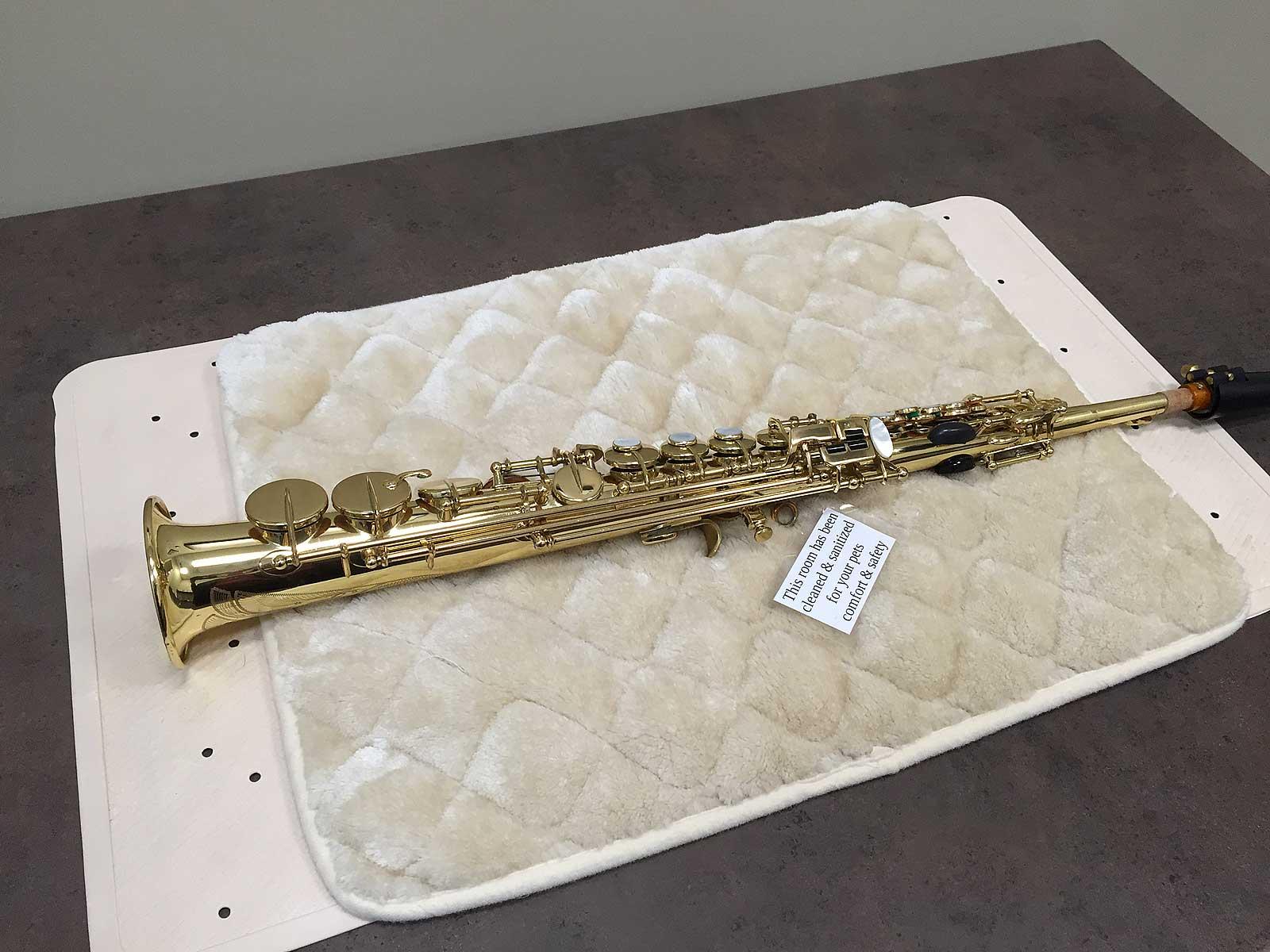 Selmer Mark VI soprano sax, vet exam table,