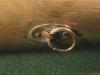 strap-ring